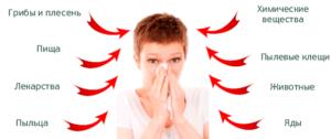 Избегать контакта с аллергенами для профилактики бронхита