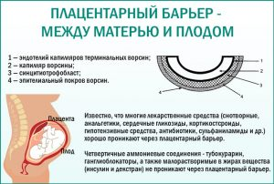 Плацентарный барьер матери и ребенка
