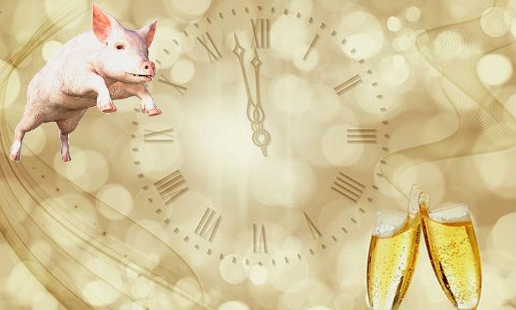 Наступающий 2019 год Свиньи