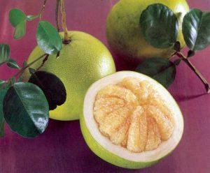 свити - гибрид помело и грейпфрута