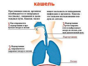 Причины кашля при глубоком вдохе