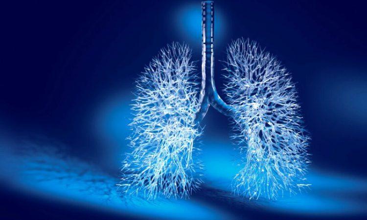 Как очистить органы дыхания в домашних условиях