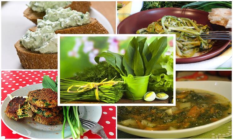 Что можно приготовить из черемши и как ее варить: 7 рецептов, советы