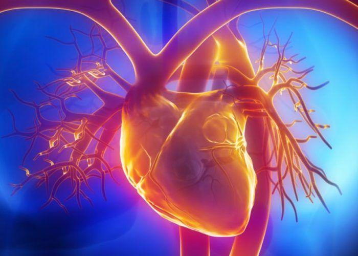 Заболевания сердечной системы и сосудов