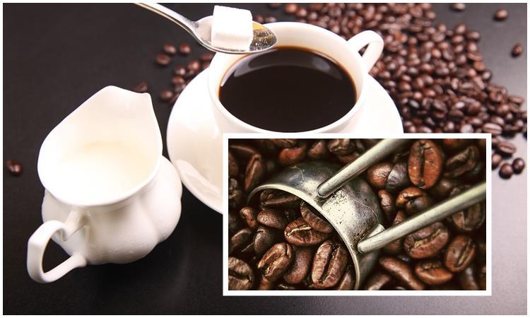 Кофе: состав, польза и вред для организма