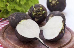 Для лечения кашля часто используют черную редьку