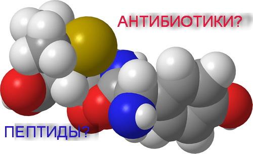 пептиды против антибиотиков
