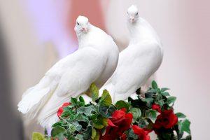 свадебные обычаи и ритуалы