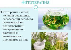 Фитотерапия для поддержания иммунитета