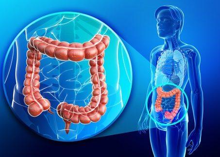Заболевания пищеварительного тракта