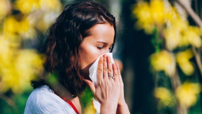 круглогодичная аллергия