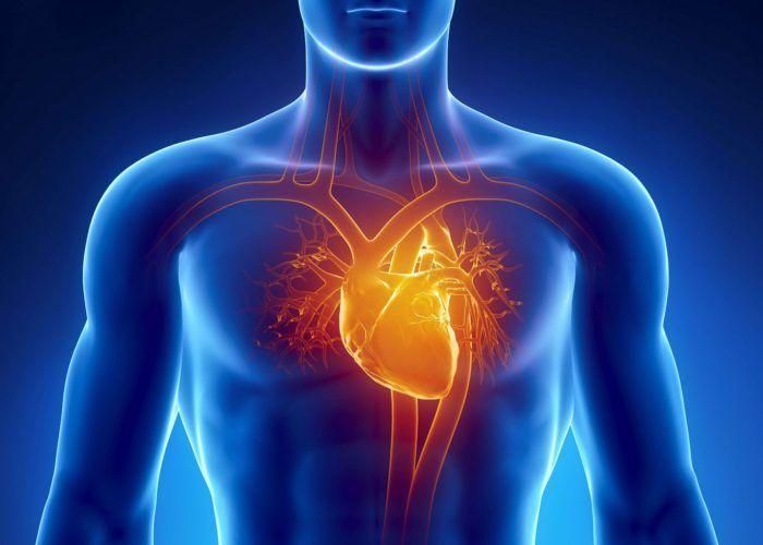 Болезни сердца и сосудов