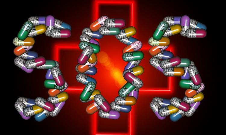 Антибиотики – не панацея: чем заменить антибактериальные препараты