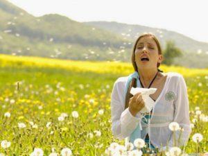 аллергия на пух тополя