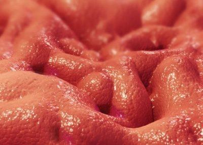 Раздражение слизистого эпителия желудка