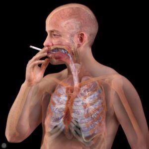 Очистку легких стоит проводить курильщикам