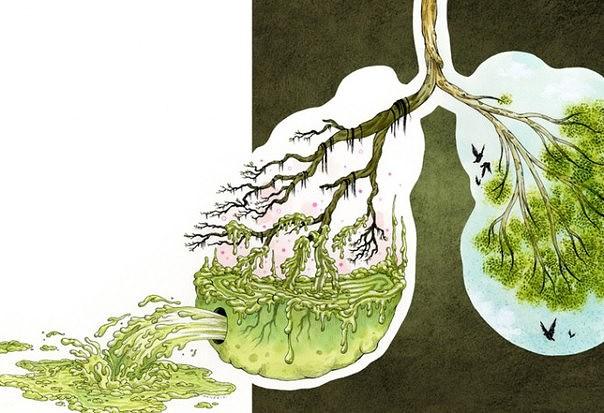 Очищаем организм от паразитов и уменьшаем отложения жира