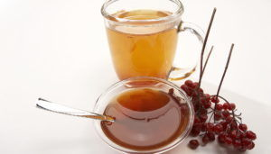 Рецепты калины с медом при простуде