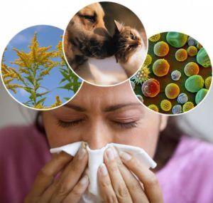 Стоит избегать контакта с аллергенами для профилактики бронхита