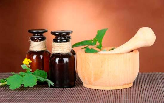 Рецепты с чистотелом, которые стоит обязательно попробовать