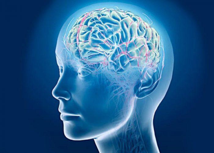 Снижается тонус кровеносных сосудов мозга
