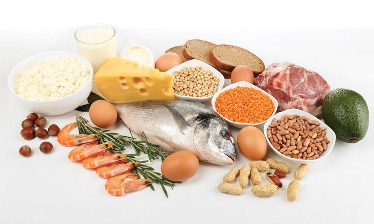 Чем заменить мясо в питании