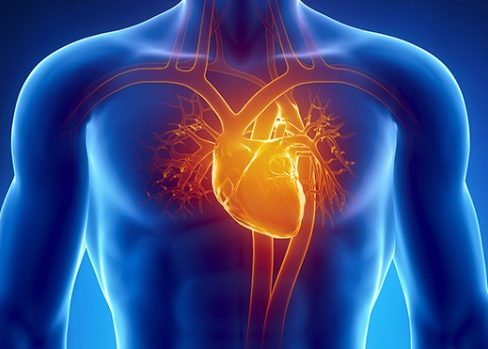 Пациенты, страдающие болезнями сердечно-сосудистой системы