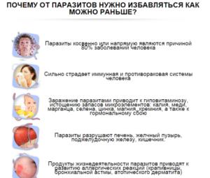 Глисты как причина кашля