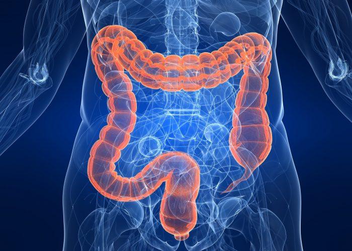 При воспалительных процессах в органах желудочно-кишечного тракта