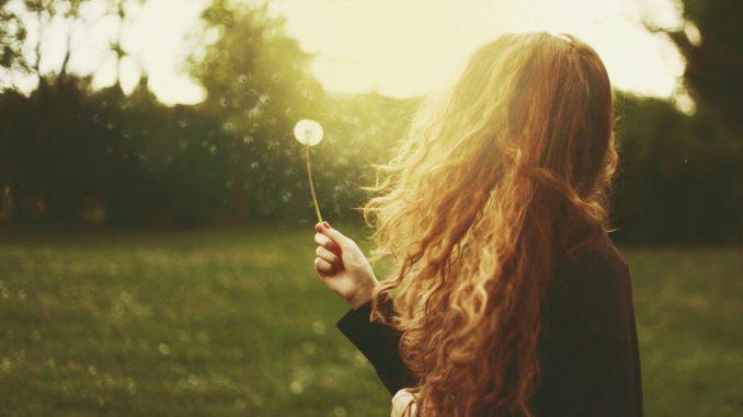 девушка в поле с одуванчиками