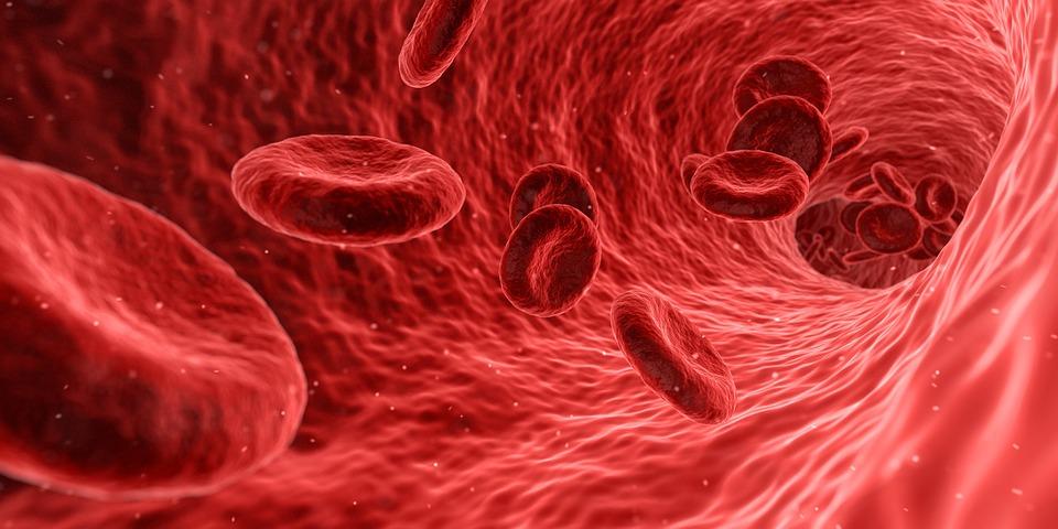 Проблемы с кровообращением: как улучшить состояние в жаркие дни