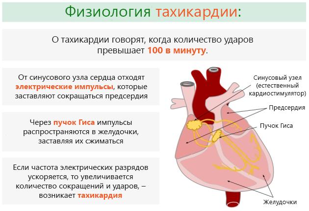 Пневмония может сопровождаться тахикардией
