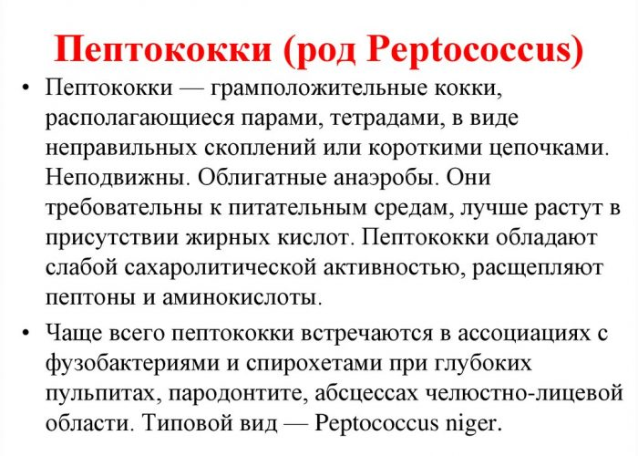 Пептококки