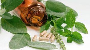 растительные препараты от простатита